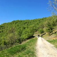 istria countryside cycling day trip croatia - Terra Magica Croatia - bike tours istria