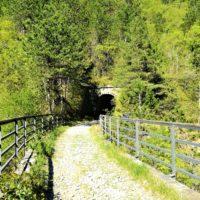 Terra Magica Croatia - bike tours istria