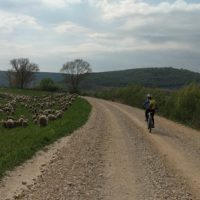 Cycling in Croatia - Istria bike tour with Terra Magica Adventures