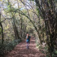 Hiking in Istria on a Croatia walking holiday